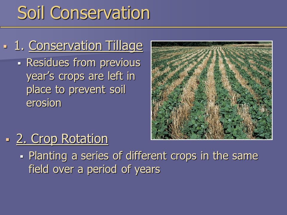  2. Crop Rotation  Planting a series of different crops in the same field over a period of years Soil Conservation  1. Conservation Tillage  Resid