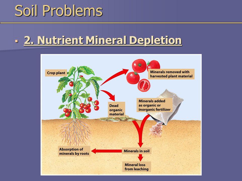 Soil Problems  2. Nutrient Mineral Depletion