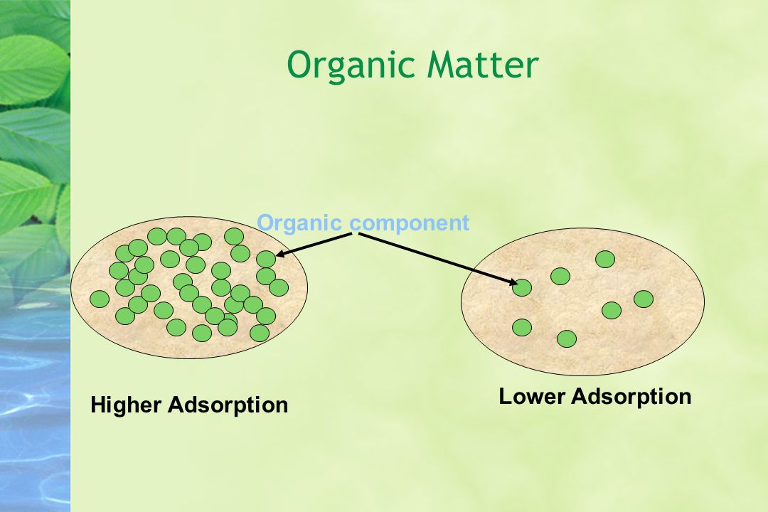 Organic component Organic Matter Lower Adsorption Higher Adsorption