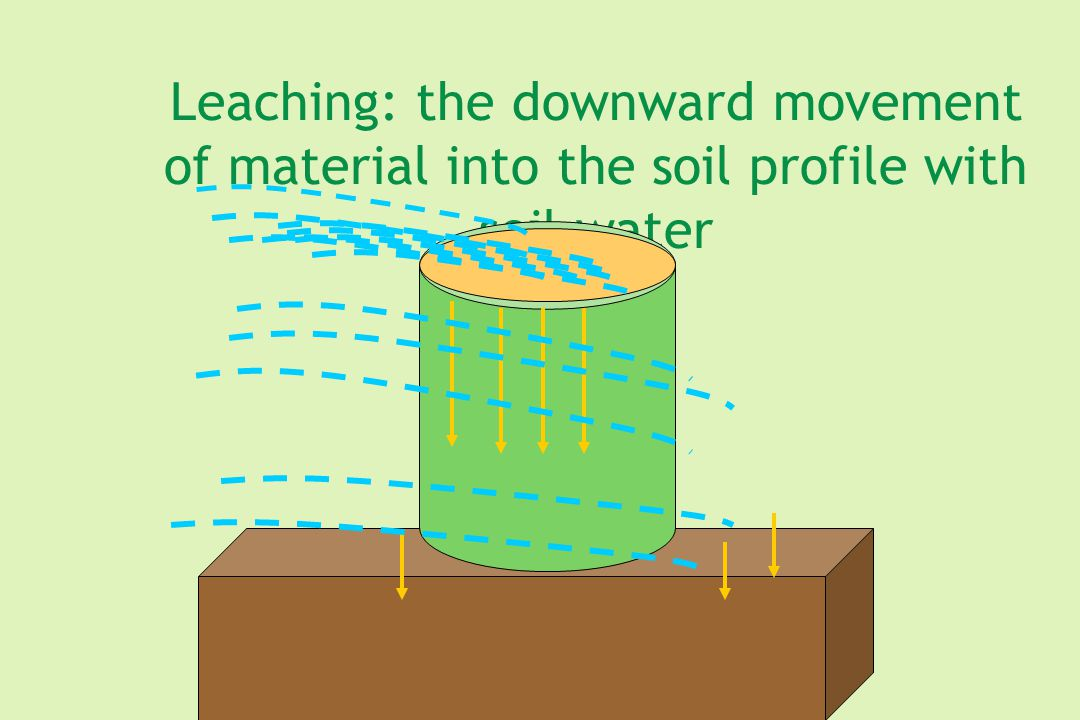 Leaching: the downward movement of material into the soil profile with soil water