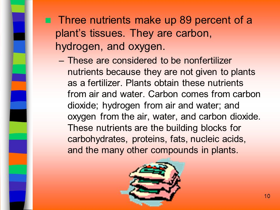10 Three nutrients make up 89 percent of a plant's tissues.