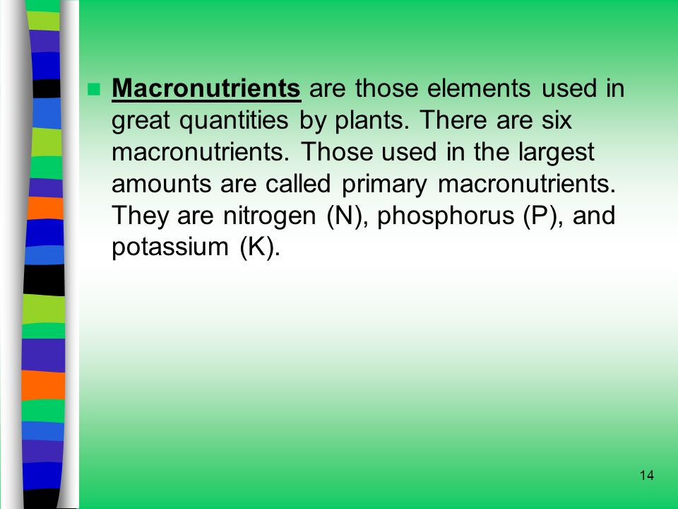 14 Macronutrients are those elements used in great quantities by plants.