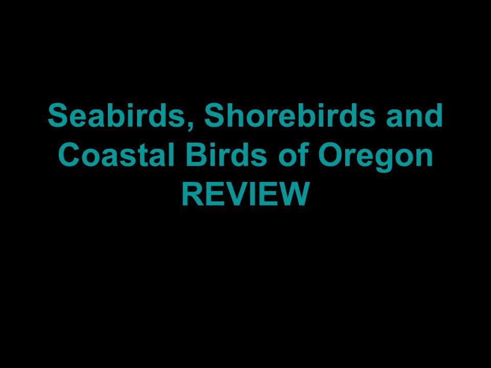 Seabirds, Shorebirds and Coastal Birds of Oregon REVIEW