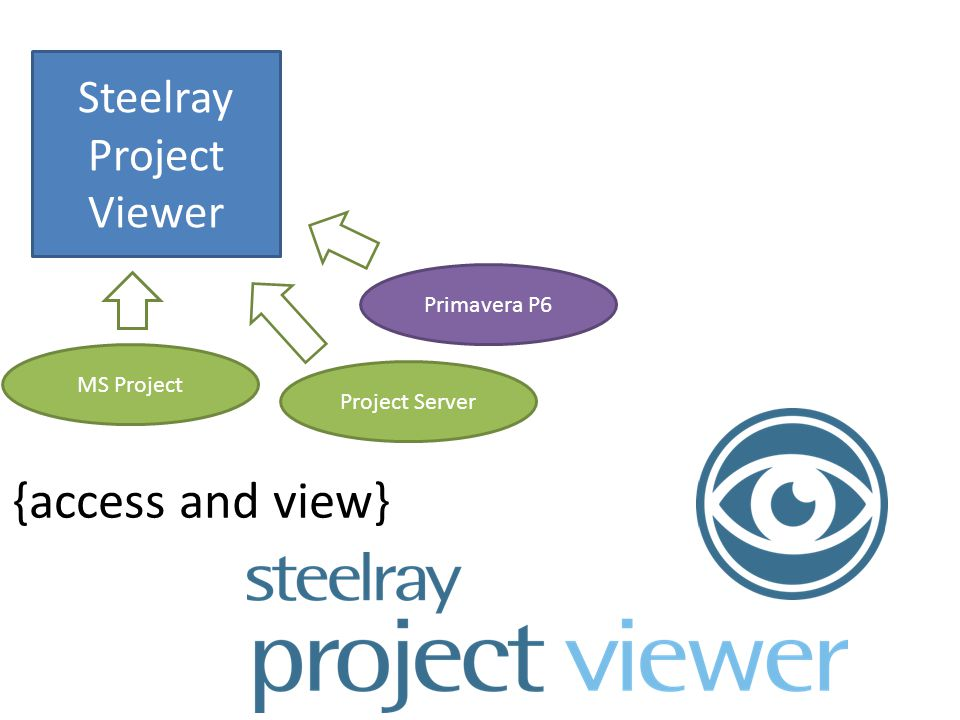 Steelray Project Viewer {access and view} MS Project Project Server Primavera P6