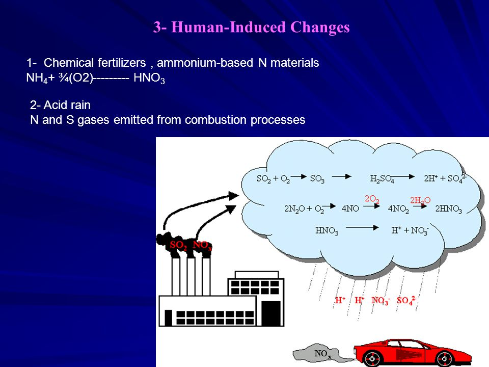 3- Human-Induced Changes 1- Chemical fertilizers, ammonium-based N materials NH 4 + ¾(O2) ---------HNO 3 2- Acid rain N and S gases emitted from combustion processes