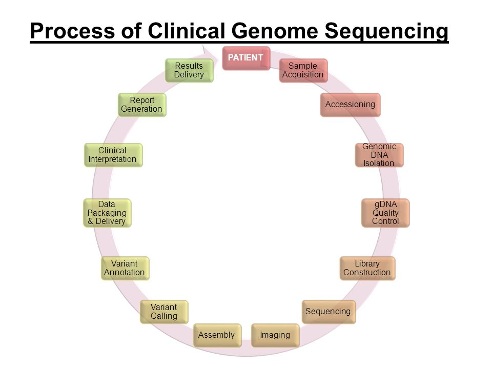 PATIENT Sample Acquisition Accessioning Genomic DNA Isolation gDNA Quality Control Library Construction SequencingImagingAssembly Variant Calling Vari