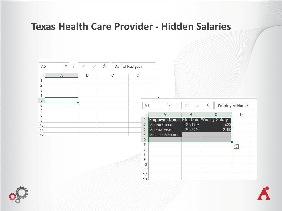 Texas Health Care Provider - Hidden Salaries