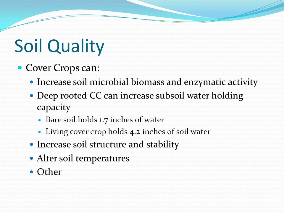 Soil Quality Cover Crops can: Increase soil microbial biomass and enzymatic activity Deep rooted CC can increase subsoil water holding capacity Bare s