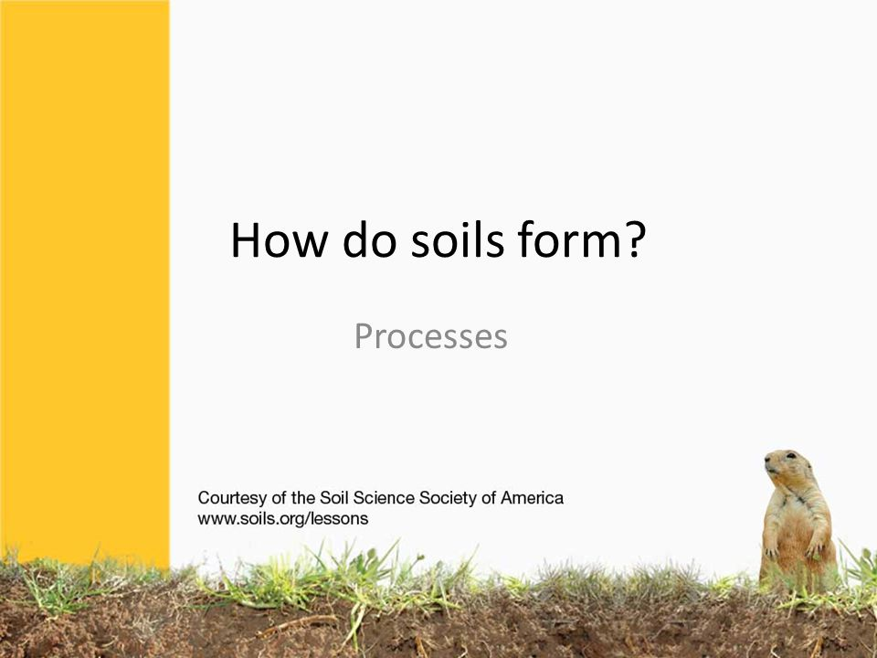 How do soils form Processes