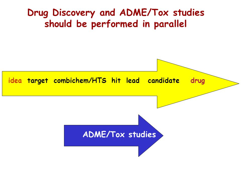 Drug Discovery and ADME/Tox studies should be performed in parallel idea target combichem/HTS hit lead candidate drug ADME/Tox studies