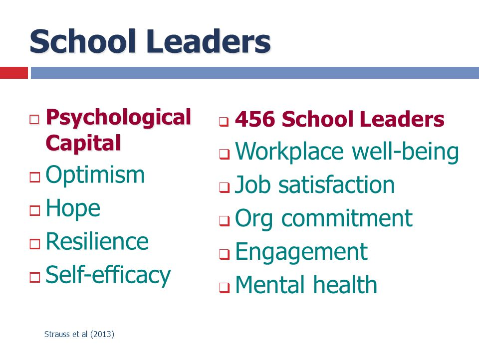 School Leaders  Psychological Capital  Optimism  Hope  Resilience  Self-efficacy  456 School Leaders  Workplace well-being  Job satisfaction 