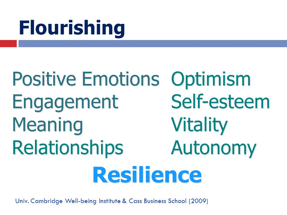 Flourishing Positive Emotions EngagementMeaningRelationshipsOptimismSelf-esteemVitalityAutonomy Univ. Cambridge Well-being Institute & Cass Business S
