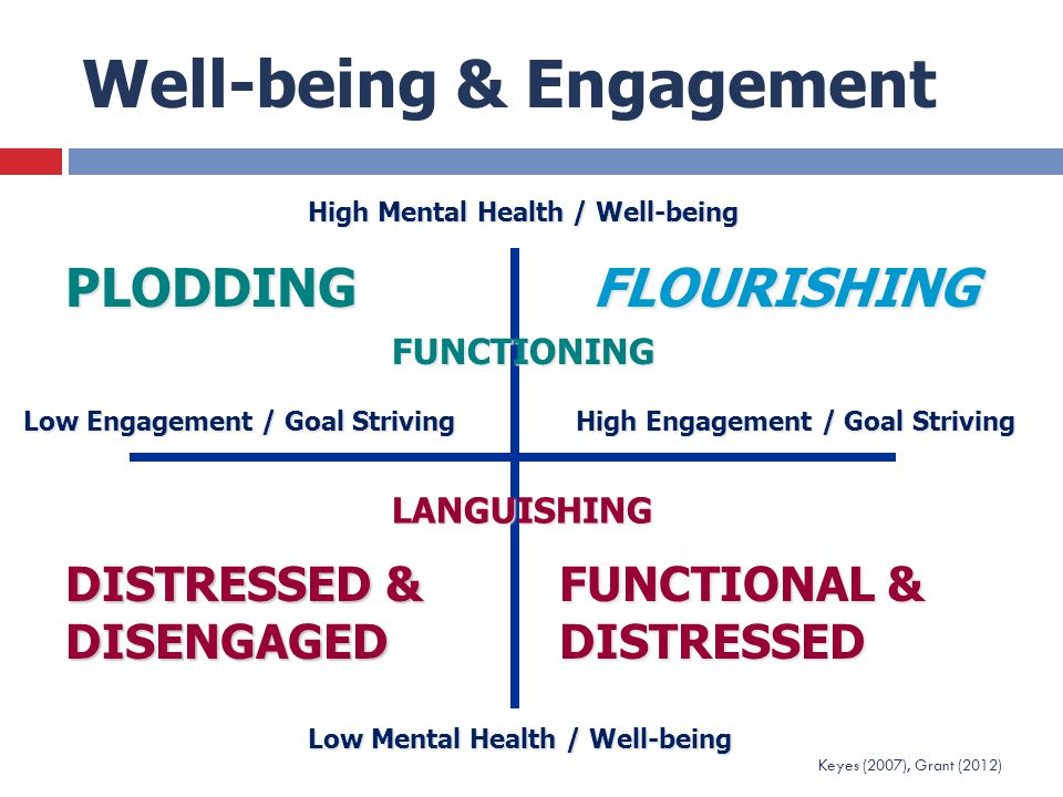 Well-being & Engagement High Mental Health / Well-being Low Mental Health / Well-being Low Engagement / Goal Striving High Engagement / Goal Striving