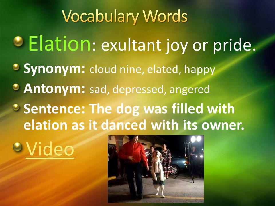 Elation : exultant joy or pride.
