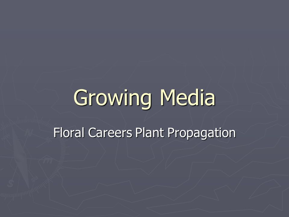 Growing Media Floral Careers Plant Propagation