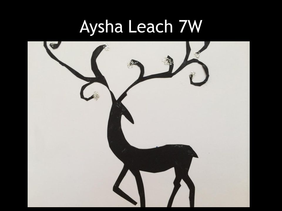 Aysha Leach 7W