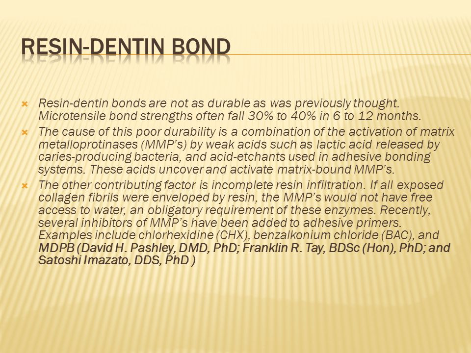  Resin-dentin bonds are not as durable as was previously thought.