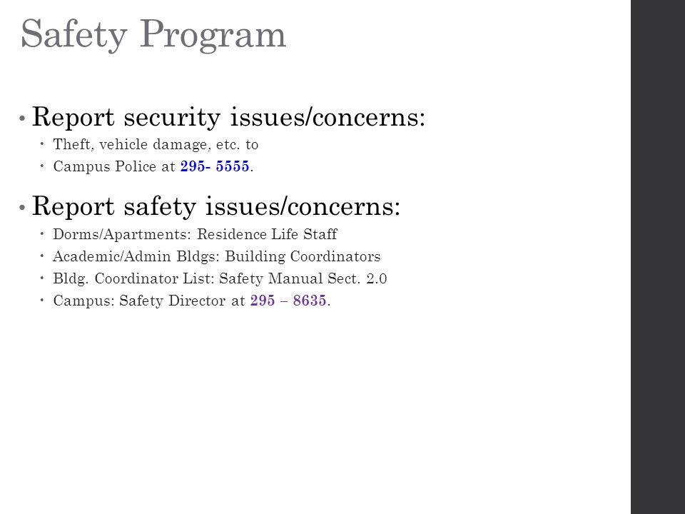 Safety Program Report security issues/concerns:  Theft, vehicle damage, etc.