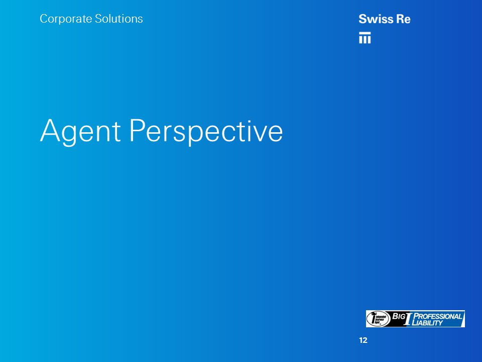 Corporate Solutions Agent Perspective 12