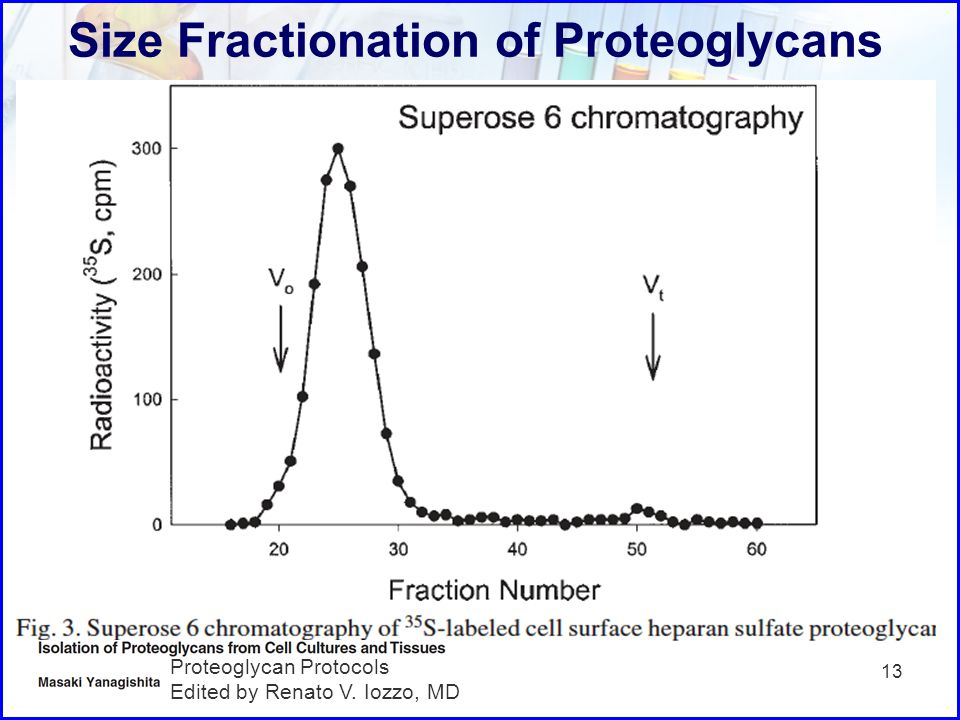 Size Fractionation of Proteoglycans 13 Proteoglycan Protocols Edited by Renato V. Iozzo, MD