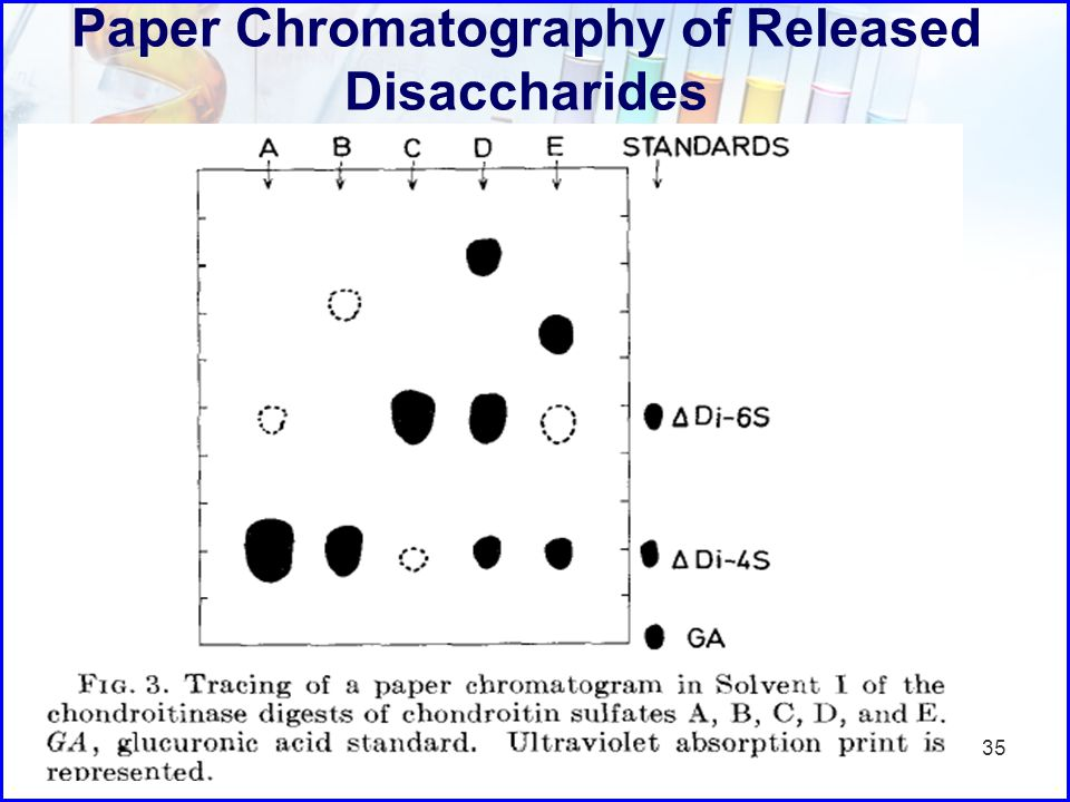 Paper Chromatography of Released Disaccharides 35