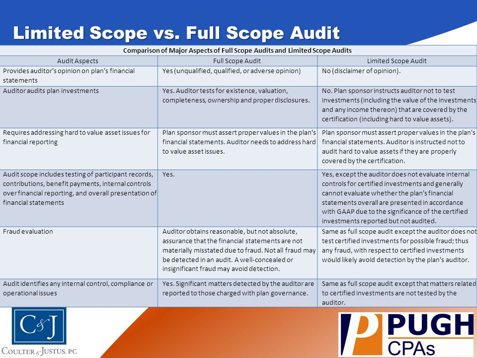 Disclaimer of Opinion Disclaimers of opinion are sometimes issued by an auditor.