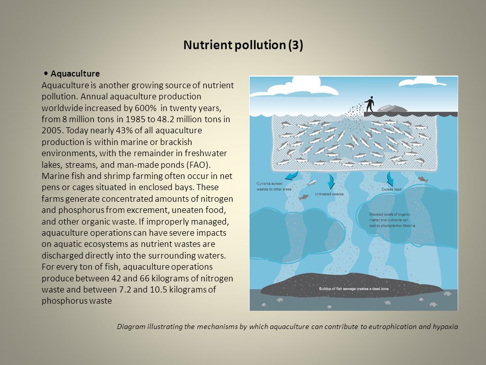 Nutrient pollution (3) Aquaculture Aquaculture is another growing source of nutrient pollution. Annual aquaculture production worldwide increased by 6