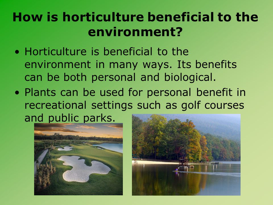 How is horticulture beneficial to the environment? Horticulture is beneficial to the environment in many ways. Its benefits can be both personal and b