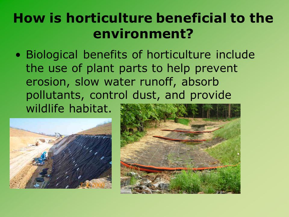 How is horticulture beneficial to the environment? Biological benefits of horticulture include the use of plant parts to help prevent erosion, slow wa