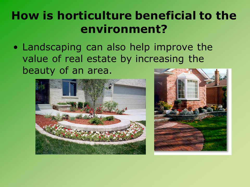 How is horticulture beneficial to the environment? Landscaping can also help improve the value of real estate by increasing the beauty of an area.