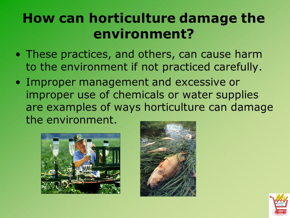 How can horticulture damage the environment? These practices, and others, can cause harm to the environment if not practiced carefully. Improper manag