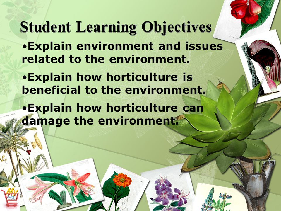 Student Learning Objectives Explain environment and issues related to the environment. Explain how horticulture is beneficial to the environment. Expl