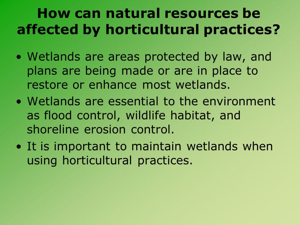 How can natural resources be affected by horticultural practices? Wetlands are areas protected by law, and plans are being made or are in place to res