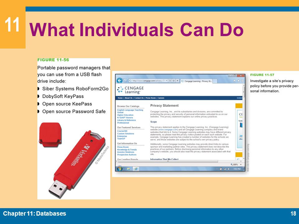 11 What Individuals Can Do Chapter 11: Databases18