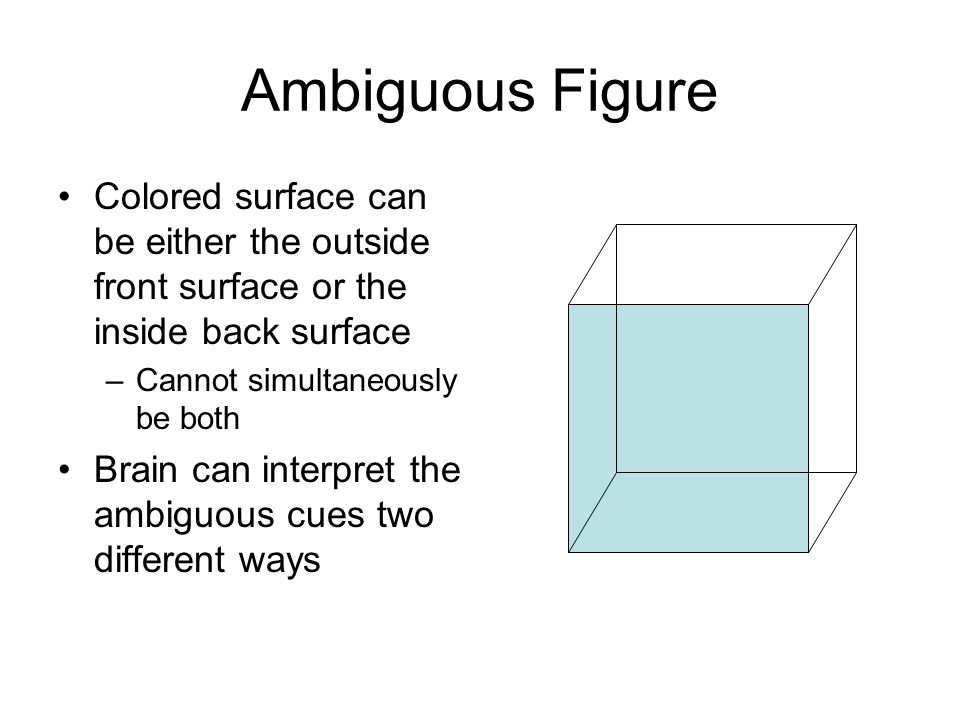 Ambiguous Figure Colored surface can be either the outside front surface or the inside back surface –Cannot simultaneously be both Brain can interpret the ambiguous cues two different ways
