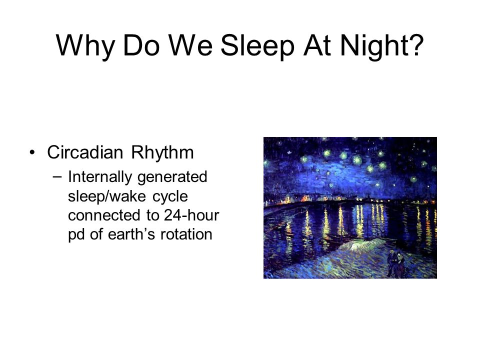 Why Do We Sleep At Night.