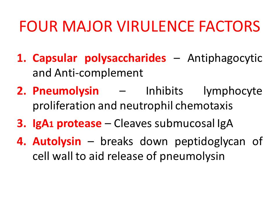 FOUR MAJOR VIRULENCE FACTORS 1.Capsular polysaccharides – Antiphagocytic and Anti-complement 2.Pneumolysin – Inhibits lymphocyte proliferation and neutrophil chemotaxis 3.IgA 1 protease – Cleaves submucosal IgA 4.Autolysin – breaks down peptidoglycan of cell wall to aid release of pneumolysin