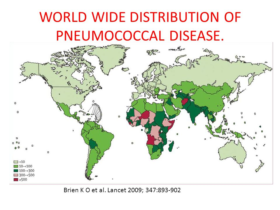 WORLD WIDE DISTRIBUTION OF PNEUMOCOCCAL DISEASE. Brien K O et al. Lancet 2009; 347:893-902