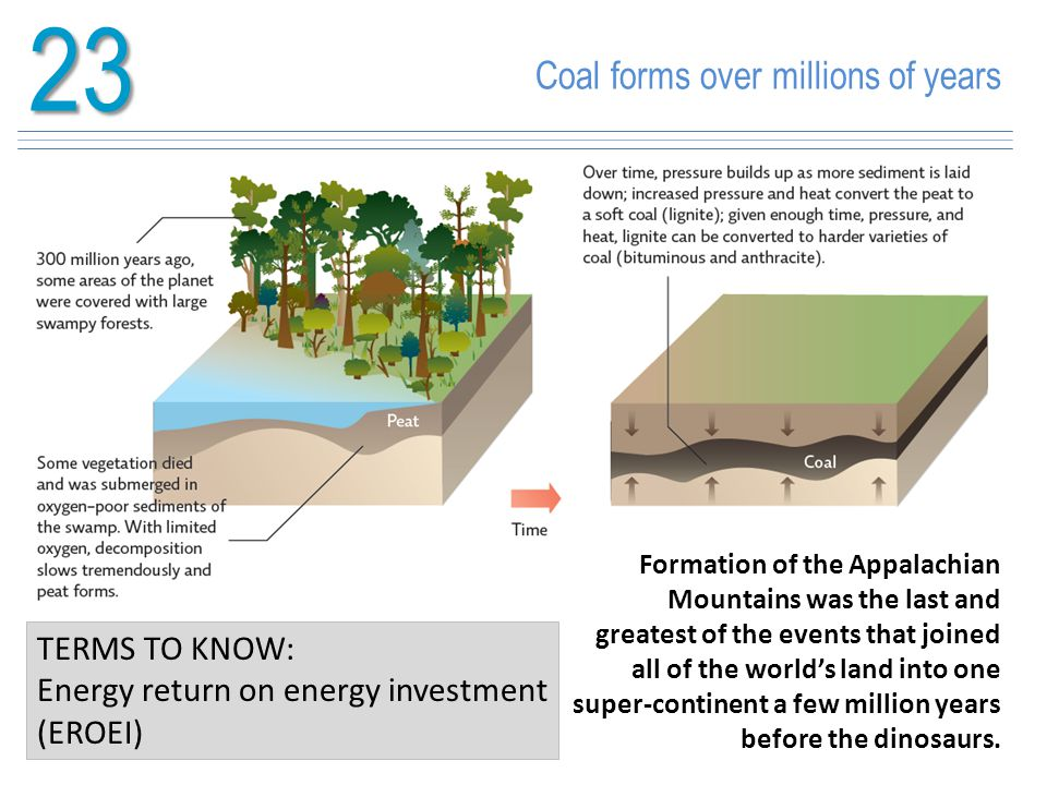 23 Coal forms over millions of years TERMS TO KNOW: Energy return on energy investment (EROEI) Formation of the Appalachian Mountains was the last and
