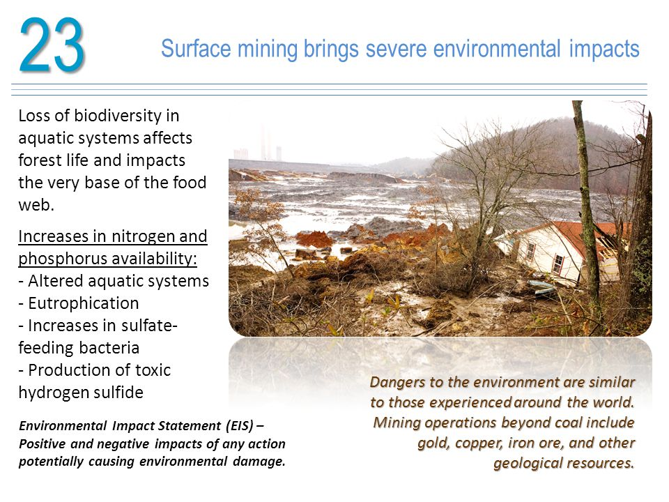 23 Surface mining brings severe environmental impacts Loss of biodiversity in aquatic systems affects forest life and impacts the very base of the foo