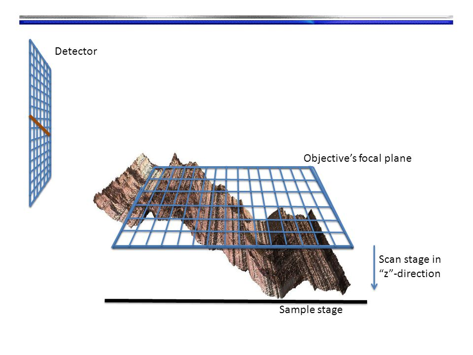 Sample stage Scan stage in z -direction Detector Objective's focal plane