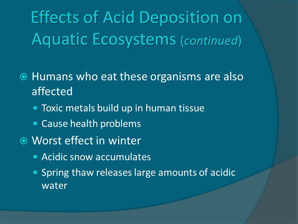 Effects of Acid Deposition on Aquatic Ecosystems (continued)  Humans who eat these organisms are also affected Toxic metals build up in human tissue Cause health problems  Worst effect in winter Acidic snow accumulates Spring thaw releases large amounts of acidic water