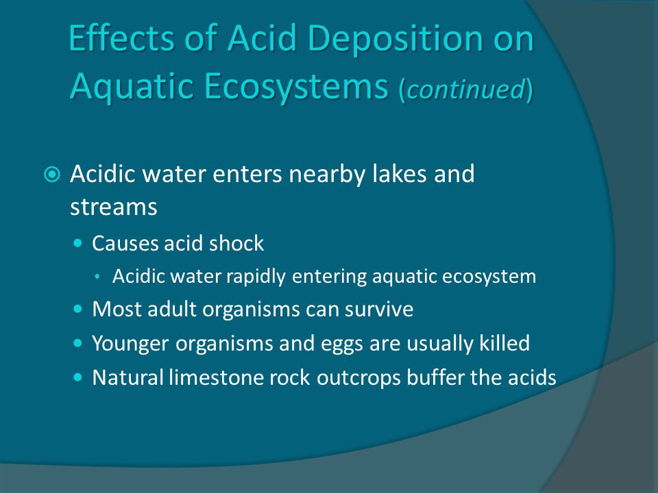 Effects of Acid Deposition on Aquatic Ecosystems (continued)  Acidic water enters nearby lakes and streams Causes acid shock Acidic water rapidly entering aquatic ecosystem Most adult organisms can survive Younger organisms and eggs are usually killed Natural limestone rock outcrops buffer the acids