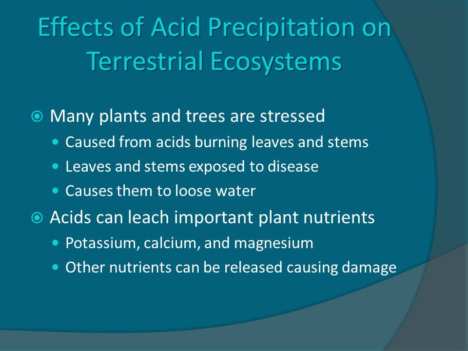 Effects of Acid Precipitation on Terrestrial Ecosystems  Many plants and trees are stressed Caused from acids burning leaves and stems Leaves and stems exposed to disease Causes them to loose water  Acids can leach important plant nutrients Potassium, calcium, and magnesium Other nutrients can be released causing damage