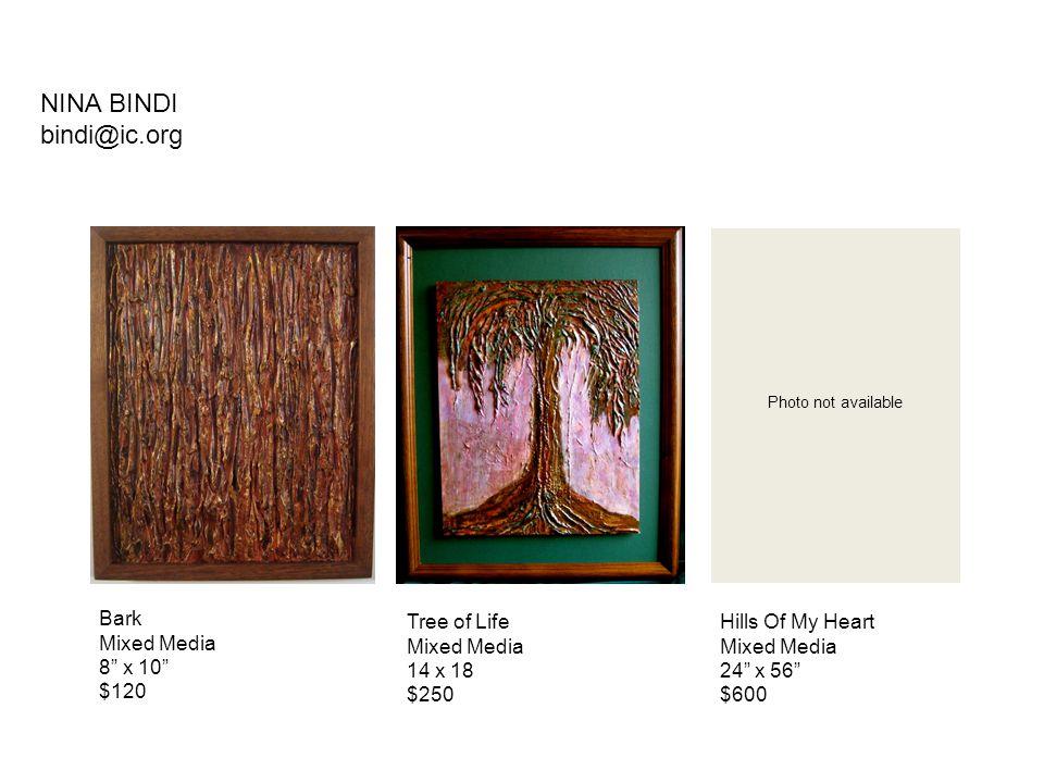 """Tree of Life Mixed Media 14 x 18 $250 NINA BINDI bindi@ic.org Bark Mixed Media 8"""" x 10"""" $120 Hills Of My Heart Mixed Media 24"""" x 56"""" $600 Photo not av"""