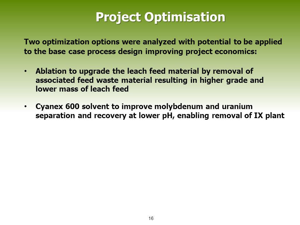 Two optimization options were analyzed with potential to be applied to the base case process design improving project economics: Ablation to upgrade the leach feed material by removal of associated feed waste material resulting in higher grade and lower mass of leach feed Cyanex 600 solvent to improve molybdenum and uranium separation and recovery at lower pH, enabling removal of IX plant Project Optimisation 16