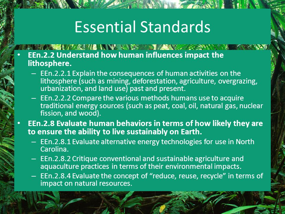 What are the causes and effects of agriculture.