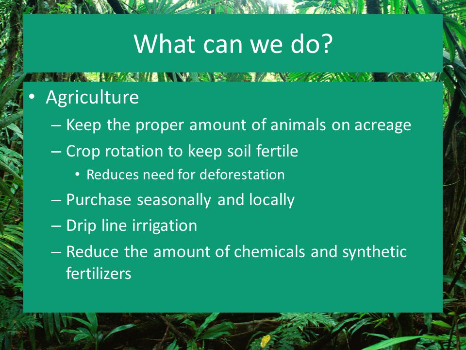 What can we do? Agriculture – Keep the proper amount of animals on acreage – Crop rotation to keep soil fertile Reduces need for deforestation – Purch