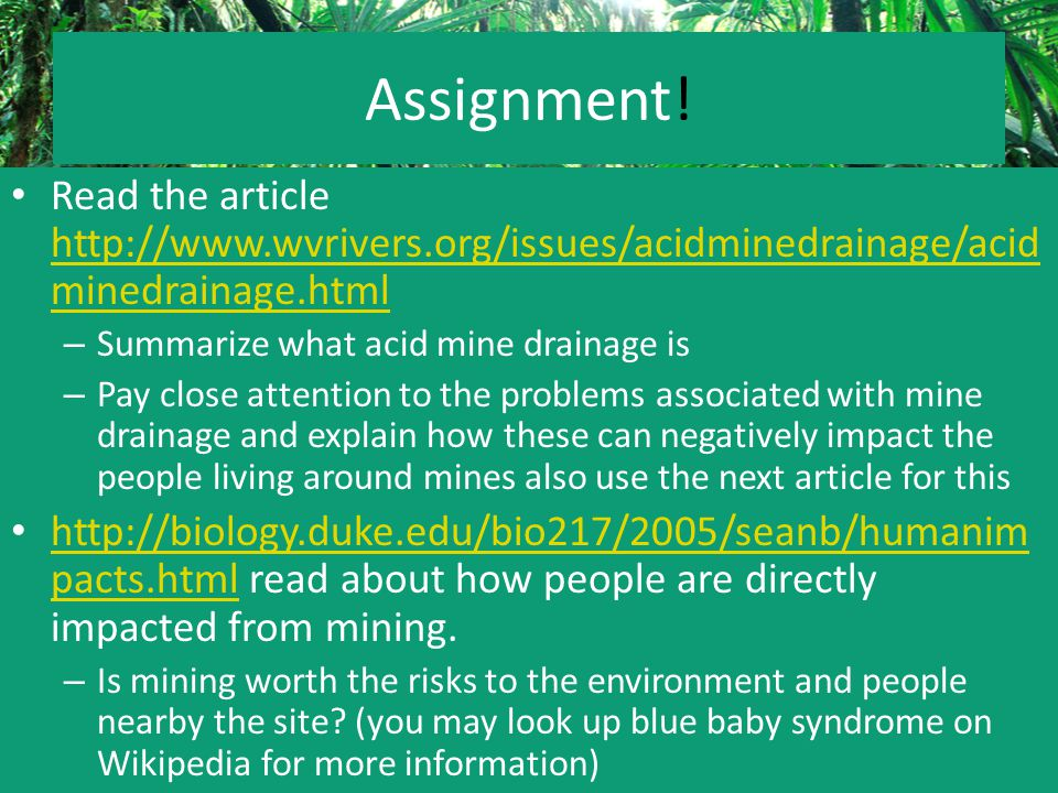 Assignment! Read the article http://www.wvrivers.org/issues/acidminedrainage/acid minedrainage.html http://www.wvrivers.org/issues/acidminedrainage/ac