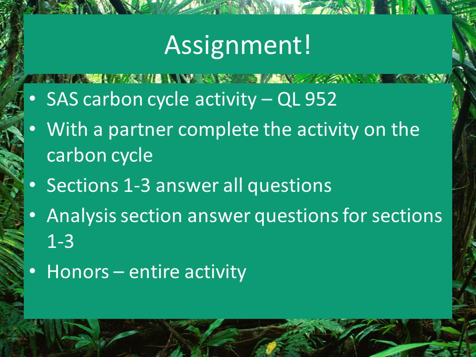 Assignment! SAS carbon cycle activity – QL 952 With a partner complete the activity on the carbon cycle Sections 1-3 answer all questions Analysis sec